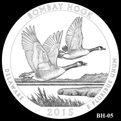 Bombay Hook National Wildlife Refuge Quarter Design BH-05