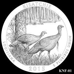 Kisatchie National Forest Quarter Design KNF-01