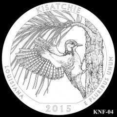 Kisatchie National Forest Quarter Design KNF-04